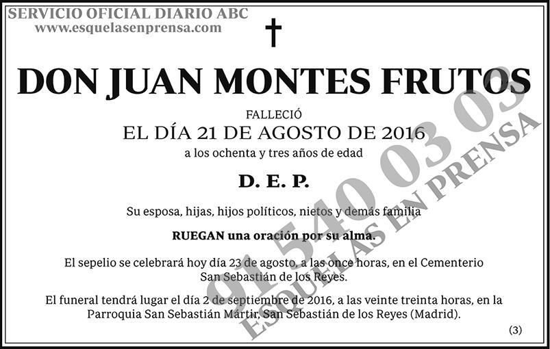 Juan Montes Frutos